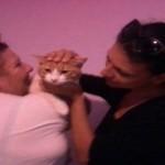 gatto salvato in via romagna (7)