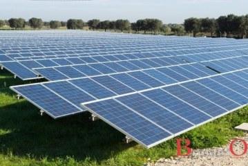 Cresce l'energia verde, in Puglia aumentano gli impianti fotovoltaici