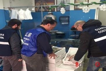 Sequestrati oltre 300 chili tra pesce e frutti di mare, multe per 13mila euro
